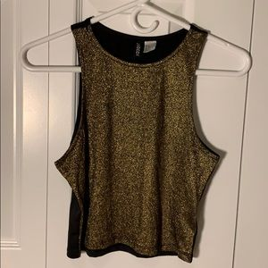 New Gold Shimmery Crop Top w Black Back